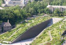 지붕 정원