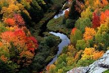 Cumberland County {Maine}