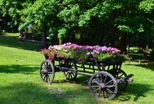 Sinaia la Sfarsit de Primavara / Plimbare prin Parcul Dimitrie Ghica, la final de primavara