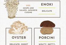 mushrooms all sorts.