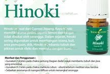 Young Living Hinoki Essential Oils