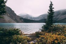 Trip-Nature
