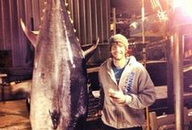 wicked tuna fav show