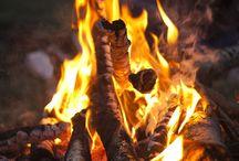Wild Fire / 焚き火