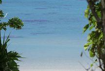 Yaeyama Islands, Okinawa, Japan-八重山諸島
