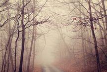 Fotografi alam