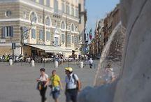 Rome / by Max Trombacco