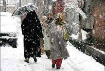 Jammu Kashmir News / Latest news from Jammu & Kashmir