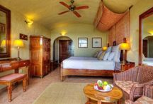 Chobe Safari Lodge / Chobe Safari Lodge is the only lodge actually inside Chobe National Park, Botswana. Here you can have the most amazing wildlife viewings without really leaving the lodge!
