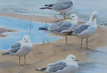 Paintings of birds