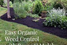 Gardening / Weed Control