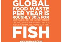 Campañas contra Desperdicio Alimentario