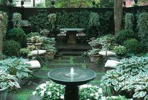 Jewelbox courtyard gardens