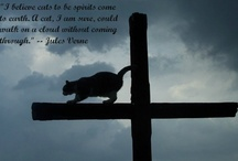 Cat Quotes at http://www.thegreatcat.org/stories-poems-and-quotations/cat-quotes-by-subject/