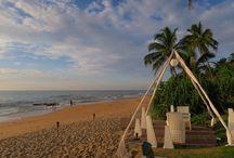 Sri Lanka / Highlights of Sri Lanka