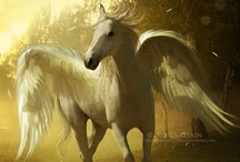 Pegasus - Pegaso