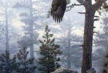 dieren en vogels in wild
