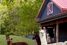 Millstone Farm at Buttermilk Falls Inn & Spa