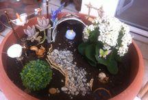 My fist fairy garden !!