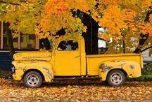 Old Cars Trucks & Buses / Rustic