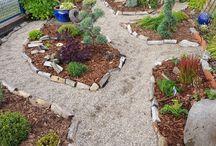 Mein Garten / Mein neu gestalteter Vorgarten.