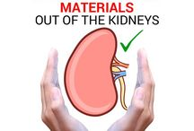 Kidneys cleansing
