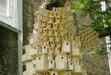 birdhouse / by Janellyn Lipinski