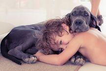 People & their pets / by Nicole Beason