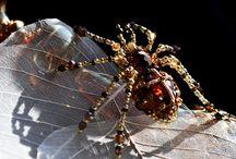 Beading - Spiders