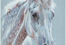 horse  art  -  coloring