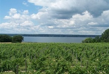 Finger Lakes Wineries / by Ryan Fitzgerald