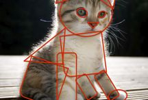this is a cute cat