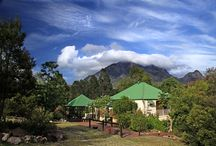 """Our Queenslander Architecture / Mt Barney Lodge is in Queensland, Australia. And the """"Queenslander"""" is a well known favorite house design made out of local timber."""