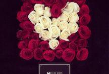Valentine's Day .