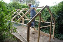 Greenhouse / DIY Greenhouse