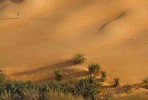 Afrika tájain.... Természeti kincsei. / Minden. ami Afrika..