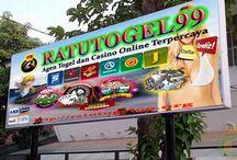 Agen Togel Singapore Hongkong / Ratutogel99.com , Situs Togel Online & Live Casino Dengan 1 User ID