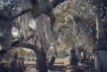 Cemeteries Graveyards and Tombs / Final place of residence for many
