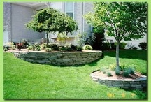 LANDSCAPING PLUS IDEAS / by Dorice Marie Smith