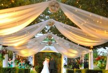 Outdoor Draping