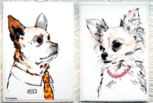 Huisdieren portret