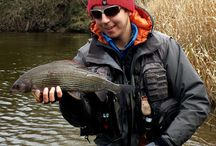 Grayling fishing rivers in the UK / Great grayling rivers from around the UK.