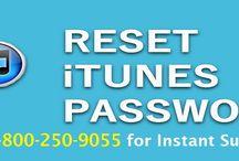 How to Reset Apple iTunes Store Password?