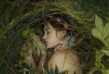 elves and fairies