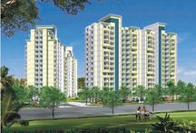 Property Dealers in Faridabad / Real Estate Agency is the branded and popular in the market whose deals best real estate property with his clients. Our agency firstly aims to provide best services of real estate like Plots in Faridabad, residential and commercial Plots in Faridabad to our customers and clients. Call 9811864729. visit :- http://faridabadrealestate.co/