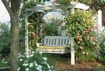 my favorite garden