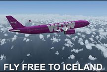 Iceland Immigration