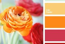 Väripaletit -color palettes