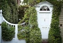 My Someday garden / by Whitney Child