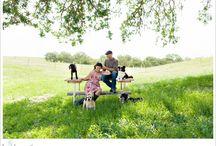 La Vida: Senior Tails Dog Portraits